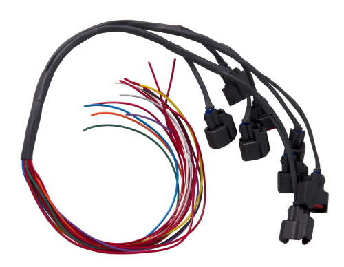 Joe Blo Speed Shop Injector Wiring Harness